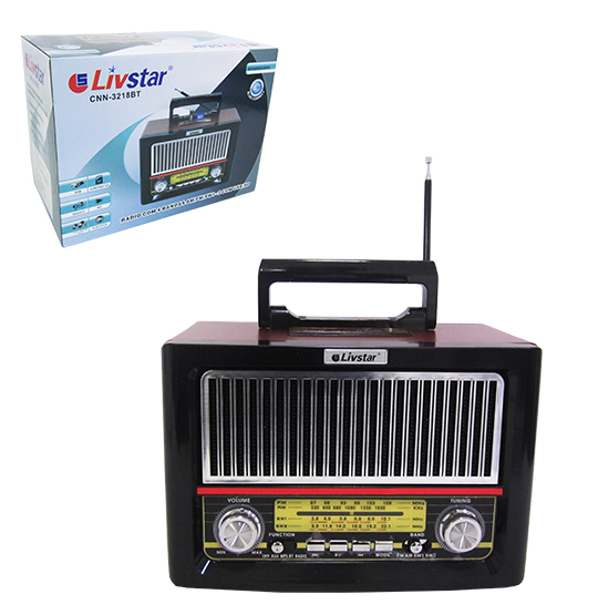RADIO RECARREGAVEL 8W BIVOLT BLUETOOTH /FM/AM/USB/SD/AUXILIAR